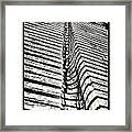 Wooden Sculpture In Palm House Kew Gardens Framed Print by Lenny Carter