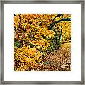 Autumn In Tennessee Framed Print by Cheryl Davis