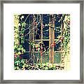 Autumn Vines Across A Window Framed Print by Georgia Fowler