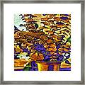 Colored Memories Framed Print by Madeline Ellis