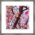 Crisp Autumn Day Framed Print by Judi Bagwell