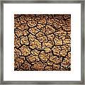Dried Terrain Framed Print by Carlos Caetano