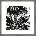 Echinacea Block Print Framed Print by Ellen Miffitt