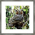 Fractal-s -great Horned Owl - 4336 Framed Print by James Ahn