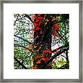 Garland Of Autumn Framed Print by Karen Wiles