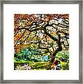 Growing Framed Print by Mo T