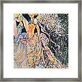 Out Of The Woods Framed Print by Jackie Rock