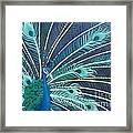 Peacock Framed Print by Estephy Sabin Figueroa