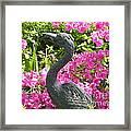 Pinkness Of A Bird Framed Print by Kimberlee Weisker