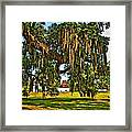 Plantation Framed Print by Steve Harrington