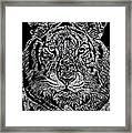 Samson Framed Print by Jim Ross