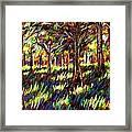 Sunlight Through The Trees Framed Print by John  Nolan