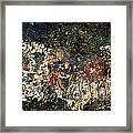 The Garden Of Gethsemane Framed Print by Jonathan E Raddatz