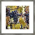 The Vineyard Framed Print by Linda Mishler