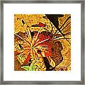 Tiger Lily Still Life  Framed Print by Chris Berry