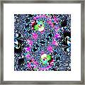 Yin And Yang . S8.s8 Framed Print by Wingsdomain Art and Photography