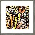 Yucca Pods Framed Print by Candy Mayer