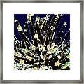 Beautiful Marine Plants 10 Framed Print by Lanjee Chee