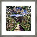 English Rose Trellis Framed Print by David Lloyd Glover