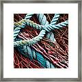 Nets And Knots Number Six Framed Print by Elena Nosyreva
