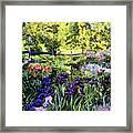 Purple Garden Framed Print by David Lloyd Glover