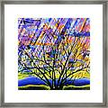Rays Of Life Framed Print by Rollin Kocsis
