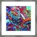 Sea Turtle Framed Print by Maria Arango