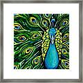 Shimmering Feathers Of A Peacock Framed Print by Elizabeth Robinette Tyndall