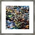 Treasures Framed Print by Terril Heilman