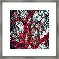 Wishing Tree Framed Print by Wim Lanclus