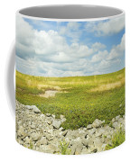 Blueberry Field With Blue Sky And Clouds In Maine Coffee Mug by Keith Webber Jr