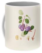 La Royale Plum Coffee Mug by William Hooker