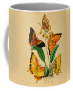 Chinese Butterflies 1847 Coffee Mug by Philip Ralley