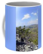 On The Edge Coffee Mug by Susan Leggett