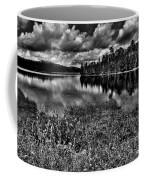 Lake Abanakee In The Adirondacks Coffee Mug by David Patterson