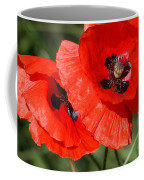 Beautiful Poppies 2 Coffee Mug by Carol Lynch