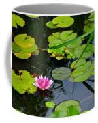 Lilly Pads Coffee Mug by Frozen in Time Fine Art Photography