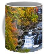 Berea Falls Coffee Mug by Frozen in Time Fine Art Photography