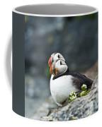 Puffins Coffee Mug by Heiko Koehrer-Wagner