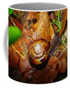 A Slow Snail Coffee Mug by Jeff Swan