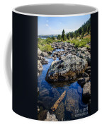 Alpine Stream Beartooth Mounain Range Coffee Mug by Edward Fielding