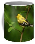 American Gold Finch Coffee Mug by Sandy Keeton
