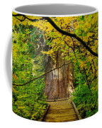 An Old Growth Douglass Fur In The Grove Of The Patriarches Mt Rainer National Park Coffee Mug by Jeff Swan