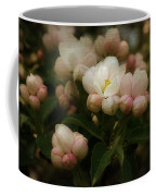 Apple Blossom Time Coffee Mug by Mary Machare