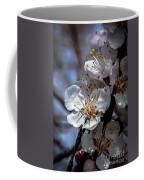 Apple Blossoms Coffee Mug by Robert Bales