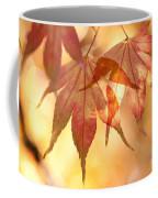 Autumn Glow Coffee Mug by Anne Gilbert