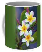 Backyard Plumeria Coffee Mug by Jade Moon
