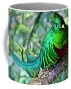 Beautiful Quetzal 4 Coffee Mug by Heiko Koehrer-Wagner