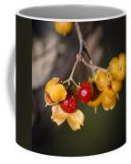 Bittersweet Squared Coffee Mug by Teresa Mucha