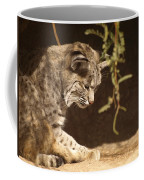 Bobcat Coffee Mug by James Peterson